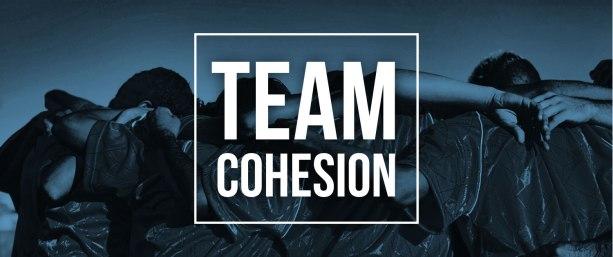 team-cohesion