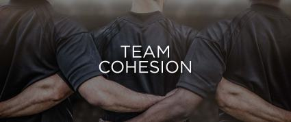 TeamCohesion